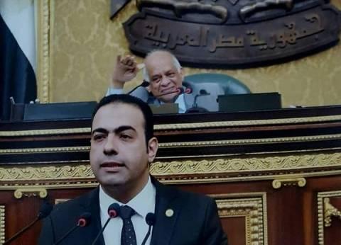 برلماني: المصريون ردوا الجميل لمصر بالمشاركة المكثفة في الانتخابات