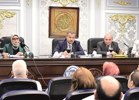 3 هيئات لإدارة ملف إنقاذ «الدواء» وإحكام الرقابة.. والحكومة: استحقاق دستورى