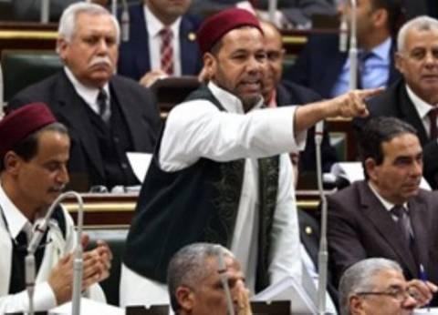 نائب: «الاستثمار المتبادل» من أولويات مصر خلال رئاسة الاتحاد الإفريقي