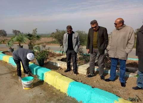 أعمال تجميل وزراعة أشجار بمدخل طامية في الفيوم