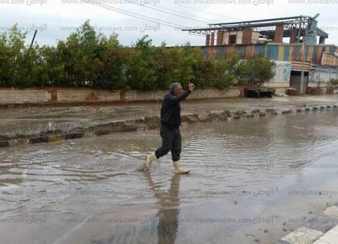 سقوط أمطار غزيرة في الغربية ورفع حالة الطوارئ