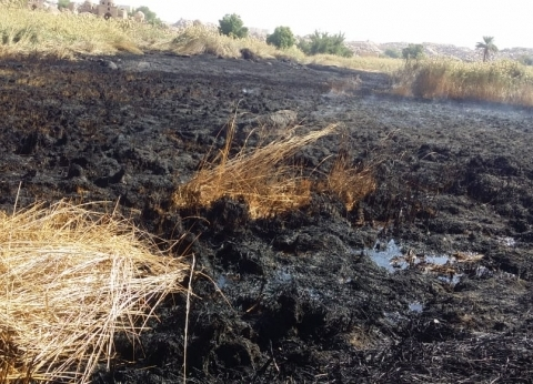 """إخماد حريق بالجبانة الفاطمية في أسوان.. و""""الأثار"""": سببته مياه صرف صحي"""