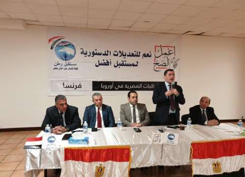 """""""مستقبل وطن"""": المصريون بالخارج مهتمون بالإنجازات والتعديلات الدستورية"""