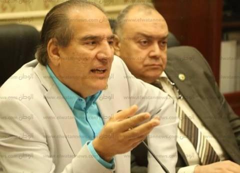 برلماني: تصويت المصريين بالخارج صفعة قوية للمتآمرين