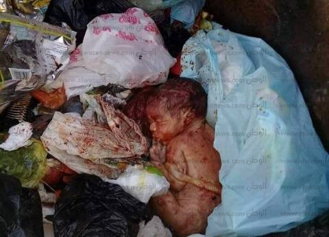 العثور على جثة طفل حديث الولادة داخل صندوق قمامة بأسوان