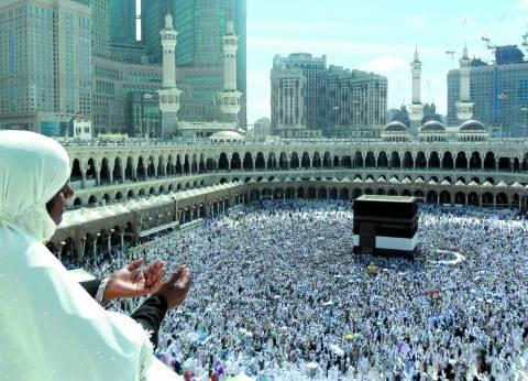 """رئيس بعثة الحج السياحي: 650 أتوبيسا لنقل الحجاج من مكة لـ """"عرفات"""""""