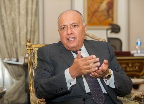 """وزير خارجية سلوفينيا يعزي """"شكري"""" في ضحايا حادث قطار محطة مصر"""