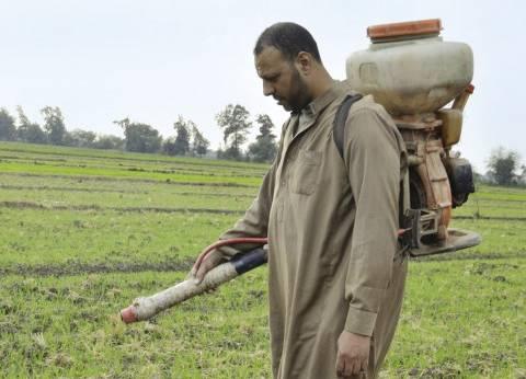 الأسمدة الكيماوية «صداع» فى رؤوس مزارعى أسوان
