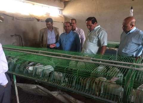 """نائب رئيس جامعة المنيا يتفقد مركز التجارب والبحوث الزراعية بــ""""شوشة"""""""