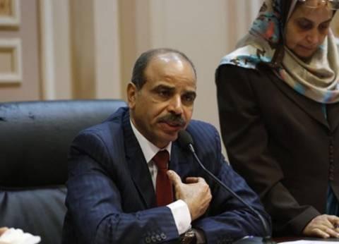 """رئيس """"زراعة النواب"""": السيسي حريص على مصلحة الفلاح المصري"""