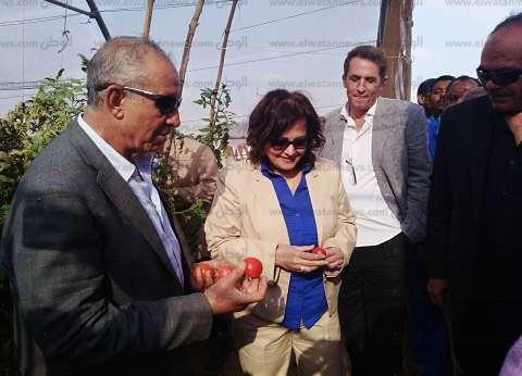 """محافظ البحر الأحمر: """"وادي حوضين"""" أمل جديد في تنمية صحراء الشلاتين"""