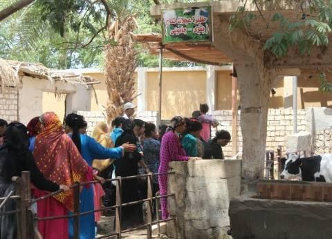 تدريب 680 سيدة معيلة على صناعة منتجات الألبان والمخللات في المنيا