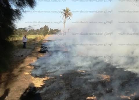 الوحدة المحلية بالحامول تحذر المزارعين من حرق قش الأرز