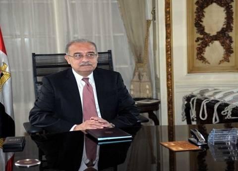 رئيس الوزراء يعين حسام الجمل رئيسا لمركز المعلومات ودعم اتخاذ القرار