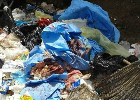 بالصور| ضبط مركز ولادة يلقي النفايات الطبية الخطرة بالشارع في المنصورة