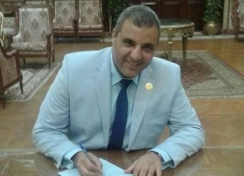 ائتلاف دعم مصر بالمنيا يشيد بإقبال المصريين على التصويت في الخارج