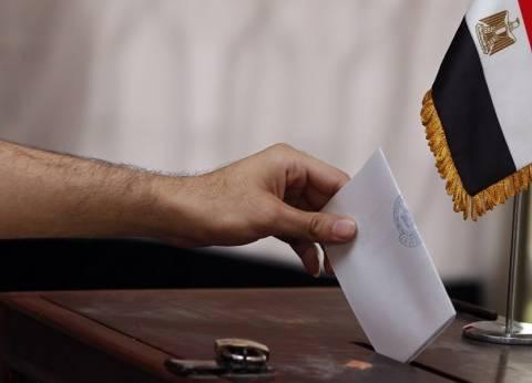 """القنصل المصري باليابان لـ""""الوطن"""": نسبة الإقبال على التصويت """"رائعة"""""""