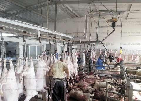 """""""الرقابة الإدارية"""": شن حملات على المجازر استعدادا للعيد في أسيوط"""