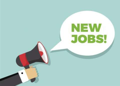 أرقام للحصول على وظائف من quotالقوى العاملةquot للمؤهلات العليا والمتوسطة