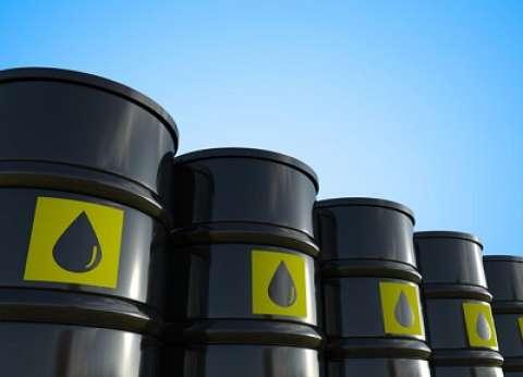الحكومة تتوقع: 67 دولارا لمتوسط سعر برميل النفط في 2019