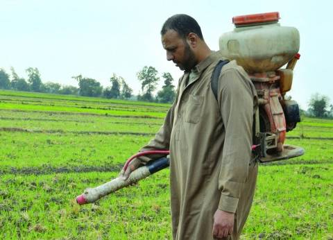ارتفاع أسعار الأسمدة يشعل الغضب فى المحافظات والمزارعون: «هى الحكومة عاوزة تموتنا ليه؟»