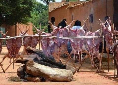 رئيس هيئة البيئة بالنيجر: حافظوا على الأشجار في عيد الأضحى