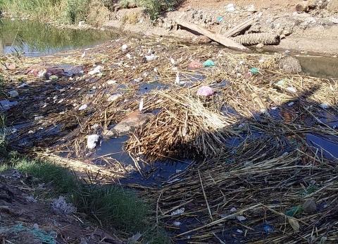 حملة «الوطن»| شرايين مصر المسدودة: ترعة «الصحارة» بسوهاج.. تلوث و«عفونة» تخنق النبات والبشر