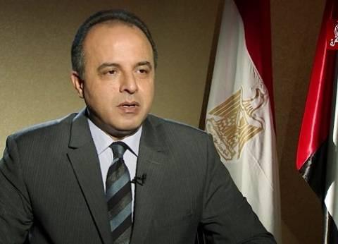 """سفير مصر بالإمارات: المشهد الانتخابي """"تابلوه رائع"""" من الوطنية"""