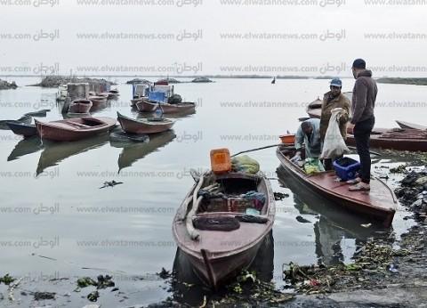 إدكو.. «صيد جائر» وتعديات وتلوث وصياد يتحدى: «الجدع ياكل سمكة واحدة من سمكها»