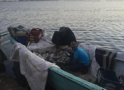 إغلاق بحيرة ناصر أمام الصيد من 15 أبريل حتى 1 يونيو