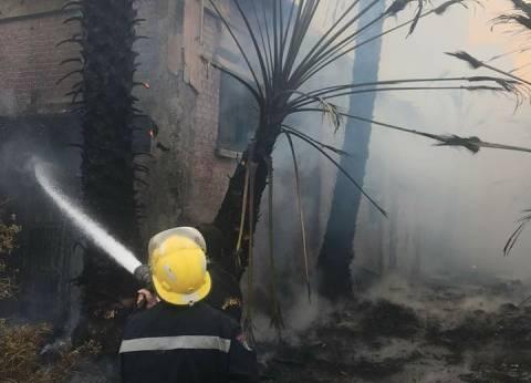 """""""أمن الإسكندرية"""" يسيطر على حريق في مستشفى سموحة"""
