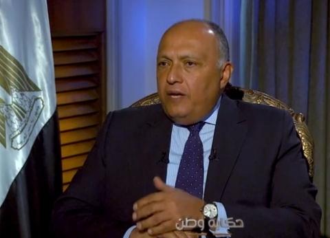 وزير الخارجية: قوات بحرية مصرية تؤمِّن مضيق باب المندب والبحر الأحمر