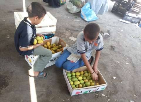 """هاشم ومحمد أصغر بائعين في السوق: """"اتعلمنا الشغل من بابا وبنساعده"""""""