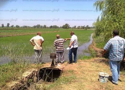 «الدقهلية»: جرارات «الزراعة» تبدأ إزالة الحقول المخالفة بعد غرس «البذور»