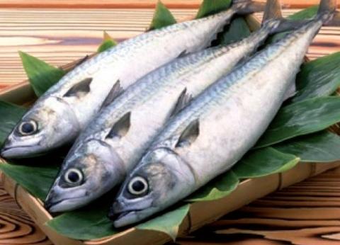 """مصدر بـ""""التجارية"""": ارتفاع أسعار الأسماك في دمياط بنسبة 30%"""