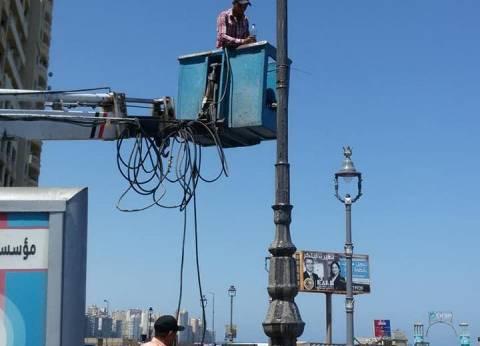 إحلال وتجديد بشبكة كهرباء العامرية في الإسكندرية