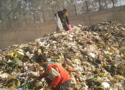 المدفن الصحى فى «أبوزعبل».. لم يعد «صحياً».. وتلال القمامة تهدد حياة نصف مليون نسمة
