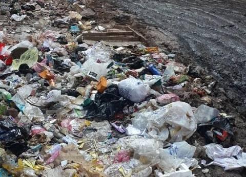 القمامة تملأ شوارع الفيوم.. ورئيس الوحدة المحلية: عجز العمالة والمعدات وراء الأزمة