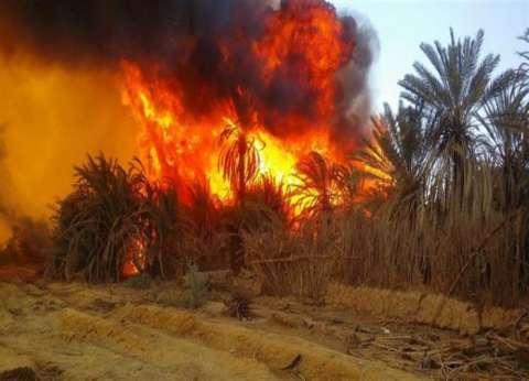 محافظ الوادي الجديد يلغي احتفالات العيد القومي بسبب حريق الراشدة
