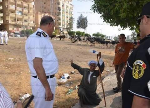 سكرتير محافظة الإسماعيلية يحصل 10 آلاف جنيه غرامة بسبب جاموس