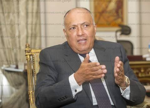 وزير الخارجية يبحث تطورات القضية الفلسطينية مع رياض المالكي