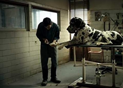 """إيطاليا تغازل جائزة الأوسكار الـ15 بفيلم """"Dogman"""""""