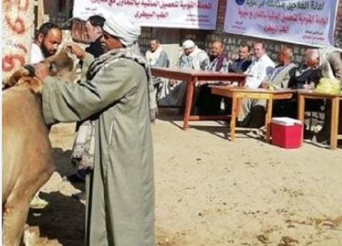 مستقبل وطن ينظم قافلة لتحصين الماشية في بني سويف