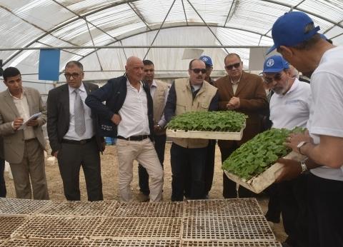 """محافظ الفيوم: """"الصوب الزراعية"""" يسهم في زيادة إنتاجية المحاصيل والدخل"""