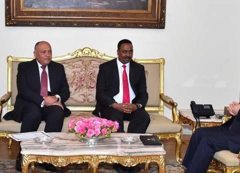 تحركات مصرية واسعة فى «أديس أبابا والخرطوم» لصد مؤامرات إثارة الفتن حول سد النهضة