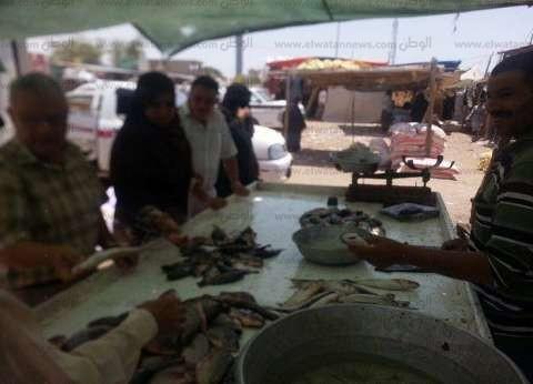 بالصور| حملة لضبط الأسعار بأسواق مدينة رأس سدر في جنوب سيناء