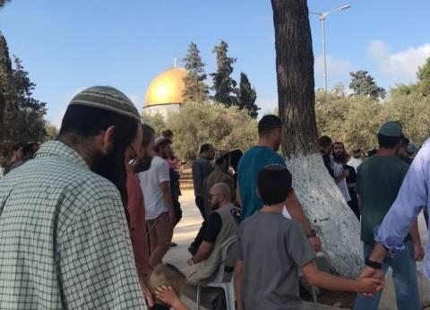 بالصور| توافد مستوطنين على الأقصى.. وفلسطينيون: الاحتلال قطع الاتصالات