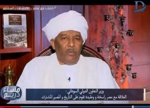 وزير التعاون الدولي السوداني: دور الجامعة العربية كاد أن يختفي