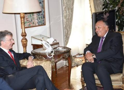 شكري: مصر حريصة على تحسين الأوضاع الإنسانية في سوريا