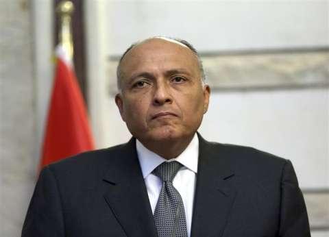 وزير الخارجية: مصر لم تخطر بشكل مسبق بتوجيه ضربات لسوريا